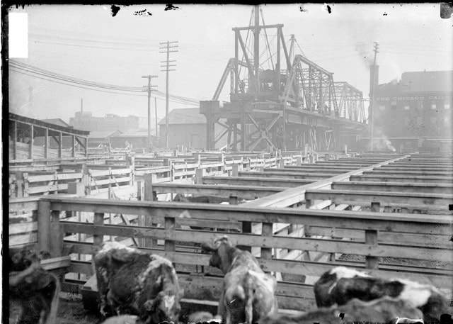 history of chicago transportation union stock yards railroads